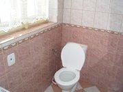 WC  v koupelně se sprchou a umývadlem